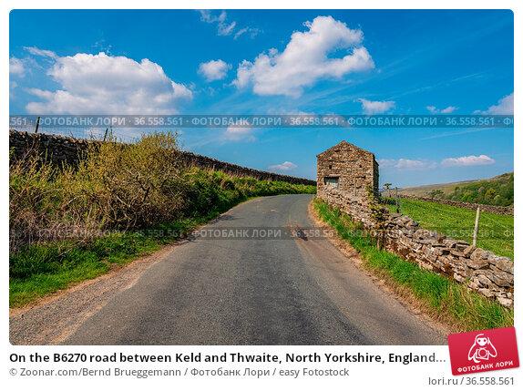 On the B6270 road between Keld and Thwaite, North Yorkshire, England... Стоковое фото, фотограф Zoonar.com/Bernd Brueggemann / easy Fotostock / Фотобанк Лори