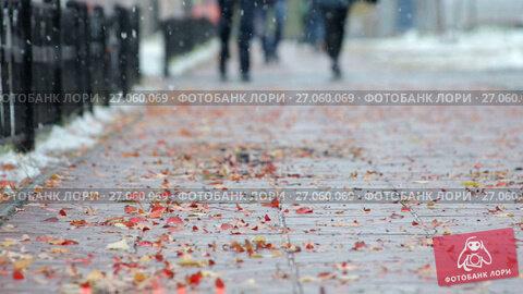 Купить «Опавшие листья деревьев на тротуаре», видеоролик № 27060069, снято 30 сентября 2017 г. (c) Икан Леонид / Фотобанк Лори