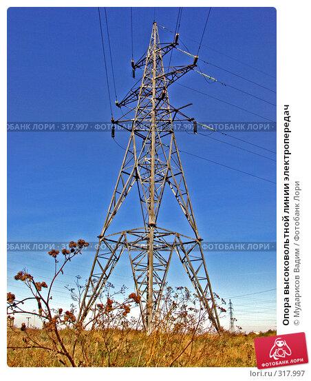 Опора высоковольтной линии электропередач, фото № 317997, снято 28 сентября 2006 г. (c) Мударисов Вадим / Фотобанк Лори