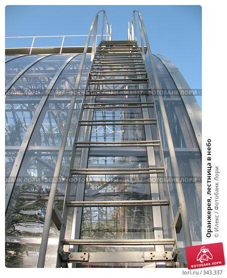 Оранжерея, лестница в небо, фото № 343337, снято 17 мая 2008 г. (c) Морковкин Терентий / Фотобанк Лори