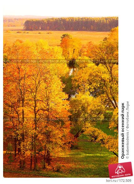 Оранжевый осенний парк, фото № 172509, снято 30 сентября 2005 г. (c) Бабенко Денис Юрьевич / Фотобанк Лори
