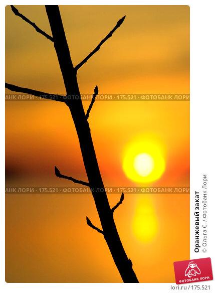 Оранжевый закат, фото № 175521, снято 26 февраля 2017 г. (c) Ольга С. / Фотобанк Лори