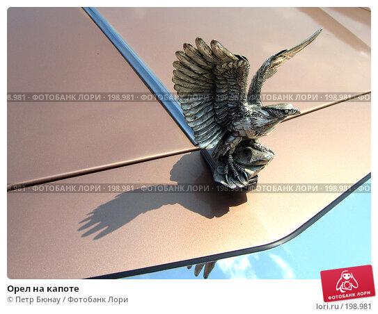 Орел на капоте, фото № 198981, снято 9 июля 2006 г. (c) Петр Бюнау / Фотобанк Лори