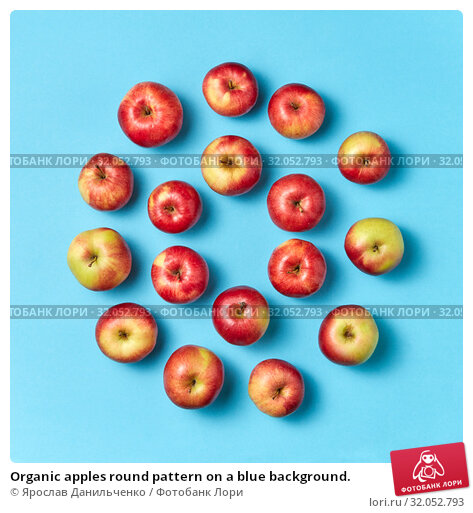 Organic apples round pattern on a blue background. Стоковое фото, фотограф Ярослав Данильченко / Фотобанк Лори