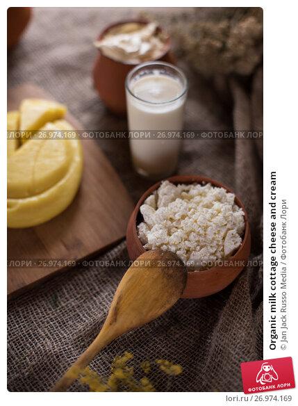 Organic milk cottage cheese and cream, фото № 26974169, снято 13 сентября 2017 г. (c) Jan Jack Russo Media / Фотобанк Лори