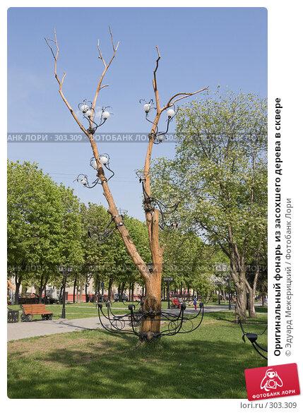 Купить «Оригинальный фонарь из засохшего дерева в сквере», фото № 303309, снято 12 мая 2008 г. (c) Эдуард Межерицкий / Фотобанк Лори