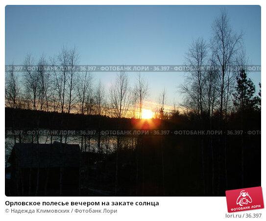 Орловское полесье вечером на закате солнца, фото № 36397, снято 19 декабря 2006 г. (c) Надежда Климовских / Фотобанк Лори