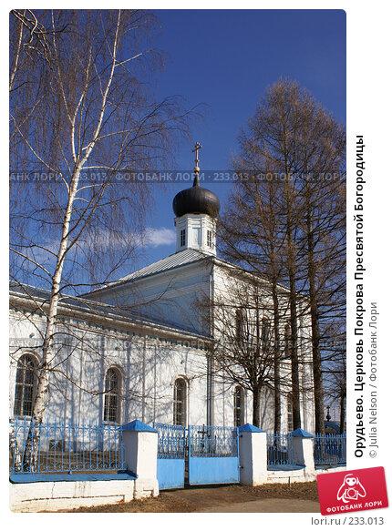 Орудьево. Церковь Покрова Пресвятой Богородицы, фото № 233013, снято 22 марта 2008 г. (c) Julia Nelson / Фотобанк Лори