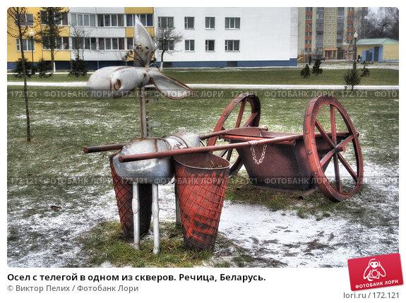 Осел с телегой в одном из скверов. Речица, Беларусь., фото № 172121, снято 23 июня 2017 г. (c) Виктор Пелих / Фотобанк Лори