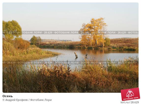 Купить «Осень», фото № 28629, снято 2 октября 2005 г. (c) Андрей Ерофеев / Фотобанк Лори