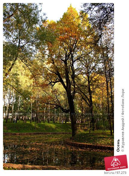 Купить «Осень», эксклюзивное фото № 97273, снято 29 сентября 2007 г. (c) Журавлев Андрей / Фотобанк Лори