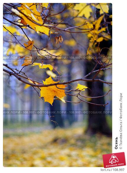 Осень, фото № 108997, снято 26 октября 2007 г. (c) Ткачёва Ольга / Фотобанк Лори
