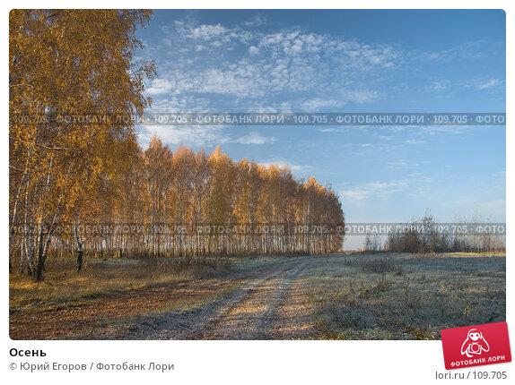 Осень, фото № 109705, снято 29 марта 2017 г. (c) Юрий Егоров / Фотобанк Лори