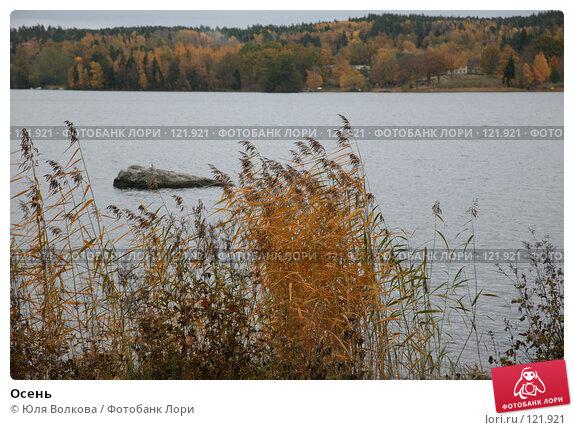 Осень, фото № 121921, снято 21 октября 2007 г. (c) Юля Волкова / Фотобанк Лори