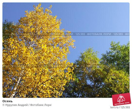 Осень, фото № 125593, снято 22 сентября 2007 г. (c) Нурулин Андрей / Фотобанк Лори