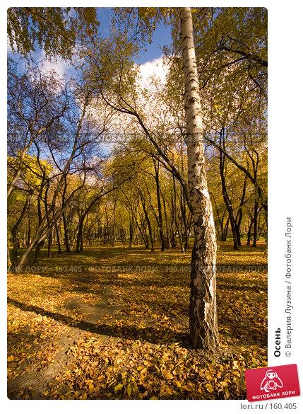 Осень, фото № 160405, снято 2 октября 2007 г. (c) Валерия Потапова / Фотобанк Лори