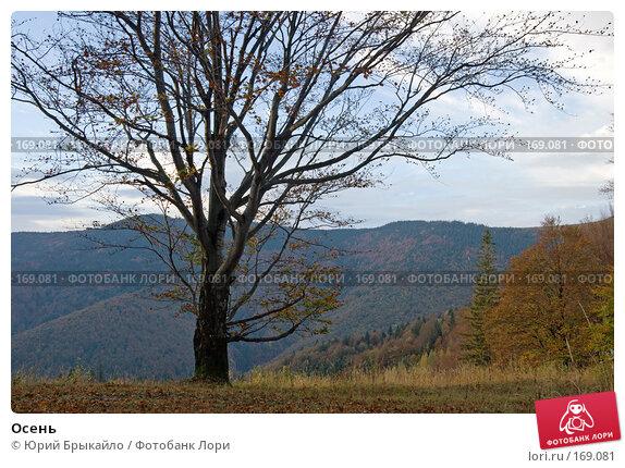 Осень, фото № 169081, снято 5 октября 2007 г. (c) Юрий Брыкайло / Фотобанк Лори