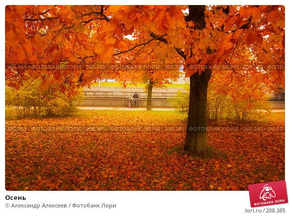 Осень, эксклюзивное фото № 208385, снято 30 октября 2007 г. (c) Александр Алексеев / Фотобанк Лори
