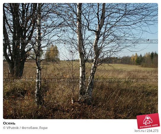 Купить «Осень», фото № 234273, снято 10 октября 2005 г. (c) VPutnik / Фотобанк Лори