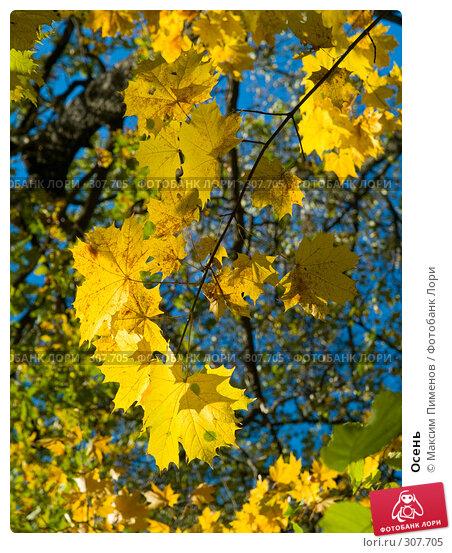 Осень, фото № 307705, снято 7 октября 2007 г. (c) Максим Пименов / Фотобанк Лори