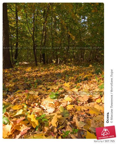 Осень, фото № 307765, снято 7 октября 2007 г. (c) Максим Пименов / Фотобанк Лори