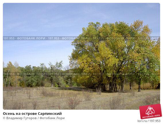 Осень на острове Сарпинский, фото № 197953, снято 6 октября 2007 г. (c) Владимир Гуторов / Фотобанк Лори