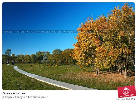 Осень в парке, фото № 100453, снято 30 сентября 2007 г. (c) Сергей Старуш / Фотобанк Лори