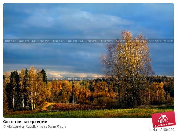 Купить «Осеннее настроение», фото № 180129, снято 18 марта 2018 г. (c) Aleksander Kaasik / Фотобанк Лори