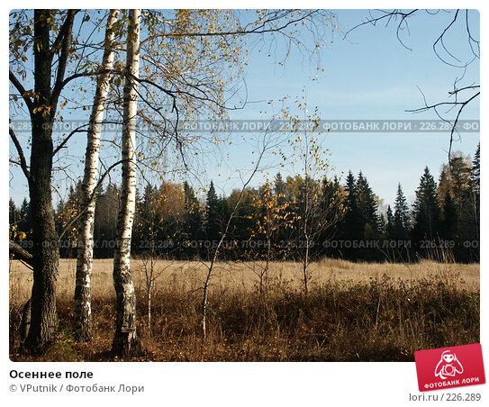 Купить «Осеннее поле», фото № 226289, снято 10 октября 2005 г. (c) VPutnik / Фотобанк Лори