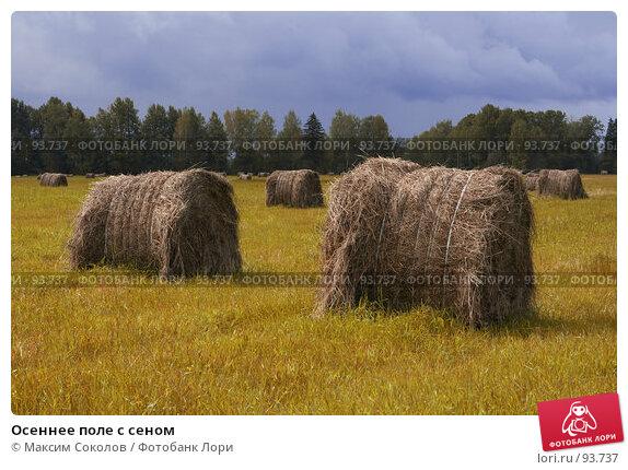 Осеннее поле с сеном, фото № 93737, снято 13 сентября 2007 г. (c) Максим Соколов / Фотобанк Лори