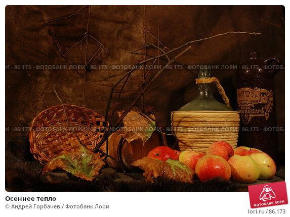 Купить «Осеннее тепло», фото № 86173, снято 10 сентября 2007 г. (c) Андрей Горбачев / Фотобанк Лори