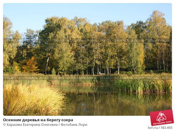 Осенние деревья на берегу озера, фото № 183493, снято 26 сентября 2007 г. (c) Карасева Екатерина Олеговна / Фотобанк Лори