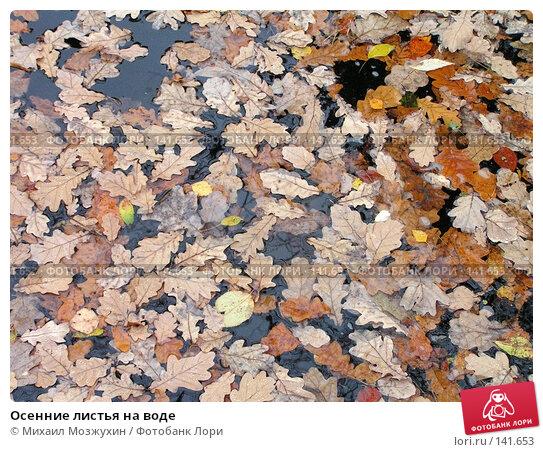 Осенние листья на воде, фото № 141653, снято 14 октября 2006 г. (c) Михаил Мозжухин / Фотобанк Лори