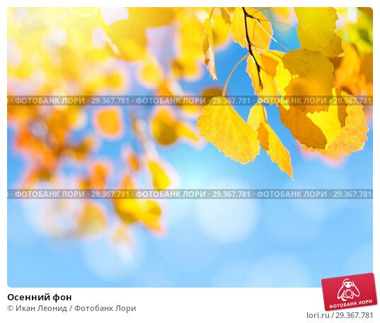 Купить «Осенний фон», фото № 29367781, снято 12 сентября 2018 г. (c) Икан Леонид / Фотобанк Лори