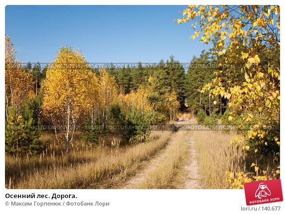 Осенний лес. Дорога., фото № 140677, снято 20 октября 2005 г. (c) Максим Горпенюк / Фотобанк Лори