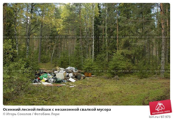 Купить «Осенний лесной пейзаж с незаконной свалкой мусора», фото № 87973, снято 24 апреля 2018 г. (c) Игорь Соколов / Фотобанк Лори