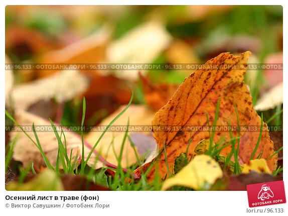 Осенний лист в траве (фон), фото № 96133, снято 25 июня 2017 г. (c) Виктор Савушкин / Фотобанк Лори