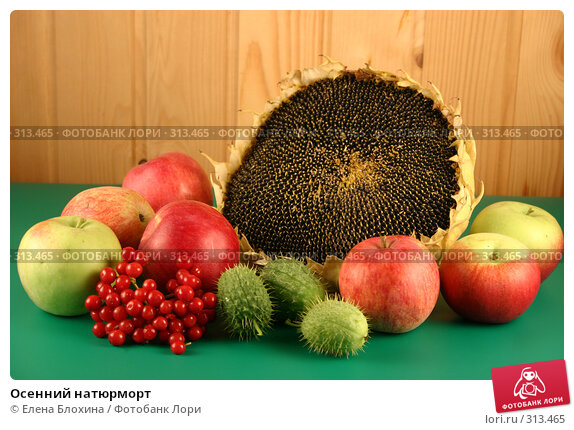 Осенний натюрморт, фото № 313465, снято 4 сентября 2007 г. (c) Елена Блохина / Фотобанк Лори