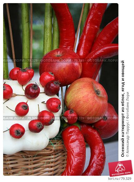 Осенний натюрморт из яблок, ягод и овощей, фото № 79329, снято 10 сентября 2006 г. (c) Александр Паррус / Фотобанк Лори