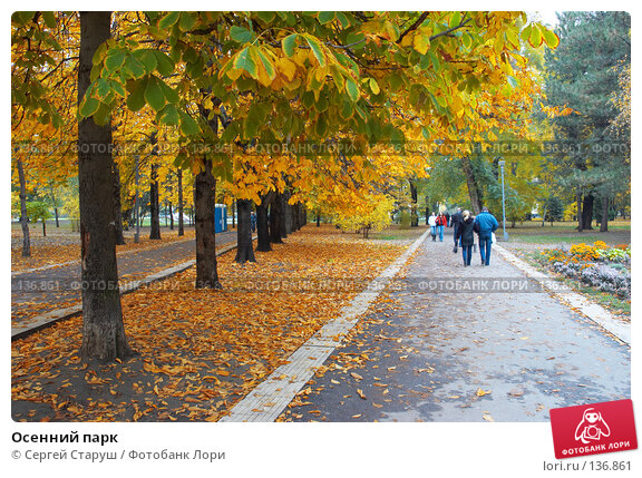 Осенний парк, фото № 136861, снято 27 октября 2007 г. (c) Сергей Старуш / Фотобанк Лори