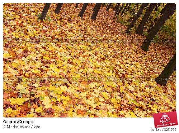 Осенний парк, фото № 325709, снято 23 марта 2017 г. (c) Михаил / Фотобанк Лори
