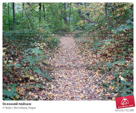 Осенний пейзаж, фото № 12249, снято 28 сентября 2006 г. (c) Roki / Фотобанк Лори