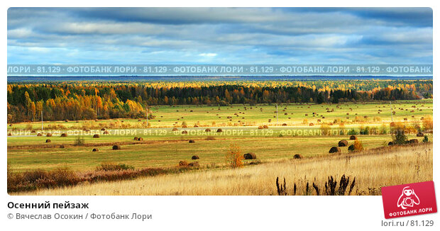 Осенний пейзаж, фото № 81129, снято 30 сентября 2006 г. (c) Вячеслав Осокин / Фотобанк Лори