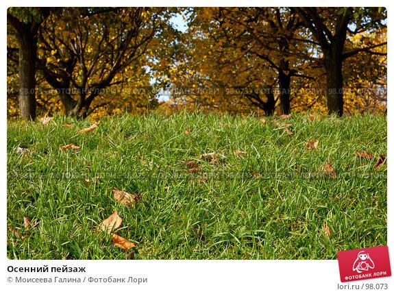 Осенний пейзаж, фото № 98073, снято 24 апреля 2017 г. (c) Моисеева Галина / Фотобанк Лори