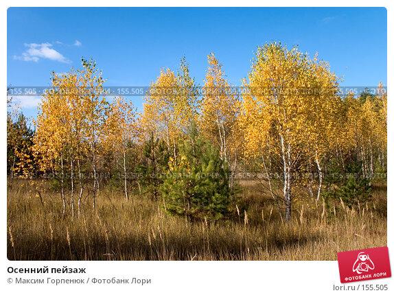 Осенний пейзаж, фото № 155505, снято 20 октября 2005 г. (c) Максим Горпенюк / Фотобанк Лори