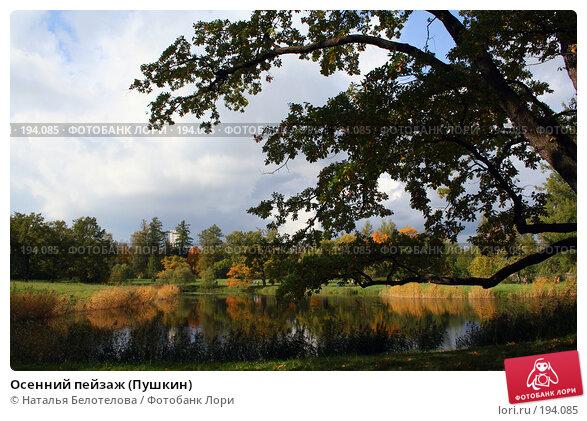 Осенний пейзаж (Пушкин), фото № 194085, снято 23 сентября 2007 г. (c) Наталья Белотелова / Фотобанк Лори