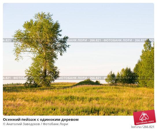 Осенний пейзаж с одиноким деревом, фото № 266821, снято 1 августа 2006 г. (c) Анатолий Заводсков / Фотобанк Лори