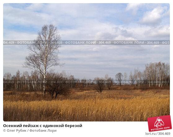 Осенний пейзаж с одинокой березой, фото № 304469, снято 8 ноября 2007 г. (c) Олег Рубик / Фотобанк Лори