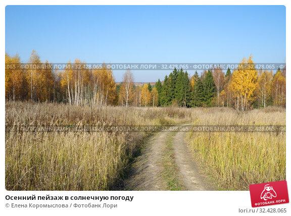 Купить «Осенний пейзаж в солнечную погоду», фото № 32428065, снято 18 октября 2018 г. (c) Елена Коромыслова / Фотобанк Лори