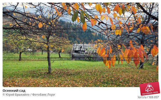 Купить «Осенний сад», фото № 169057, снято 3 октября 2007 г. (c) Юрий Брыкайло / Фотобанк Лори